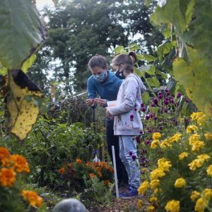 Gardens Growing Community During a Pandemic