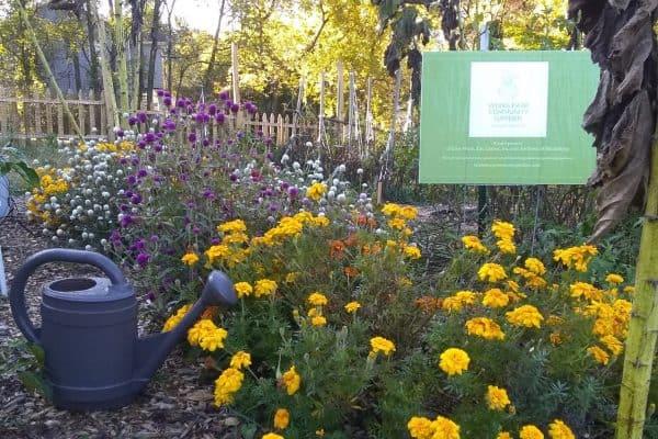 Wong Park Community Garden